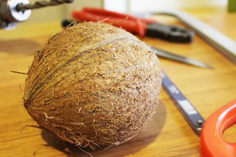 Кожура кокоса в аквариуме