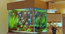 Роль аквариума в интерьере.